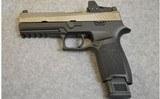 Sig Sauer ~ P320 ~ 9mm Luger