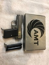 AMT Rare .22 LR Back Up Stainless Compact
