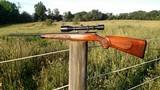 Geco Winchester 22 Hornet - 1 of 6