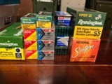 Remington and Assorted 22 Ammo