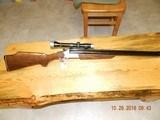 Savage24 B-DL 22magx20 gauge 3inch