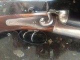 T. Wild Hammer Gun, Back Action Side Lock. 12 gauge