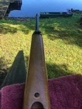 Ruger 96 .17 HMR - 8 of 13