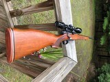 Remington 600 Wildcat .223