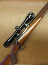 Ruger Model 77/22