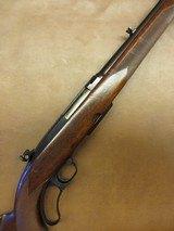 Winchester Model 88 Pre-64