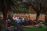Namibia's Finest Plains Game Safari 7 days all inclusive!!! - 9 of 15