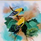 """Goldfinches"" by glenn emmons - 1 of 1"