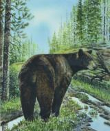 """Black Bear"" Watercolor Painting by Greg Tener"