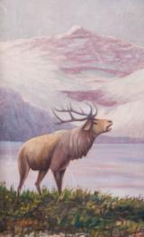 Folky Elk - 1 of 3