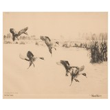"""""""Rice Field Pintails"""" etching by Richard Bishop - 2 of 4"""