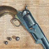 Civil War Colt by Don Prechtel - 3 of 5