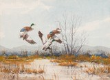 Waterfowl by Bruce Dines - 2 of 4