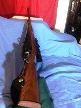 RUGER M77 HAWKEYE .375 RUGER MAGNUM CALIBER - 13 of 19