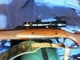 RUGER M77 HAWKEYE .375 RUGER MAGNUM CALIBER - 10 of 19