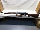 Remington Nylon 76 Lever Action Rifle,22LR