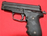Sig Sauer P229 in 40 cal - 12 of 15