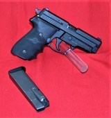Sig Sauer P229 in 40 cal
