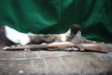 Ruger M77 .243 - 5 of 8