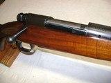Winchester Pre 64 Mod 70 Varmiter 220 Swift Nice!