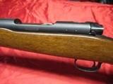 Winchester Pre 64 Mod 70 Varmint 243 - 16 of 19