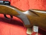 Winchester Pre 64 Mod 70 Varmint 243 - 17 of 19