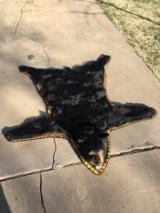 Canadian Black Bear Rug