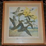 Pair of Lynn Bogue Hunt DuPont Waterfowl prints