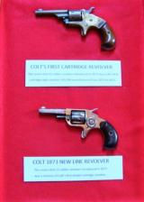 2 Colt 1800's Revolvers in a Lockable Display Case