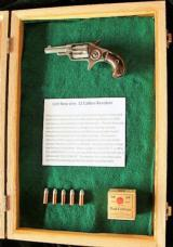 Antique Colt New Line Revolver & Ammo in Display Case