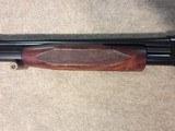 Winchester Model 12 20g Pigeon Grade - 11 of 13