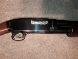 Winchester Model 12 20g Pigeon Grade - 3 of 13