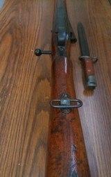 Siamese Mauser - 10 of 10