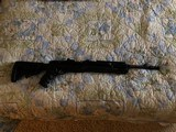 Ruger mini 14 with folding stock