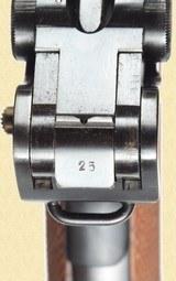 MAUSER 1906/34 SWISS MODEL BANNER - 9 of 13