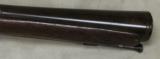 1800s Belgium Made Percussion Blunderbuss- 2 of 9