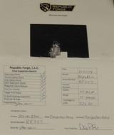 Republic Forge .45 ACP Caliber Republic 1911 Bobtail Pistol NIB S/N RF357XX - 6 of 6