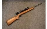 Savage Anschutz ~ 64 ~ .22 Long Rifle