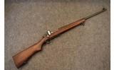 springfield armorym1922 mii.22 long rifle